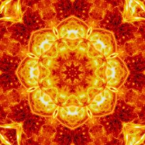 Sun Lotus